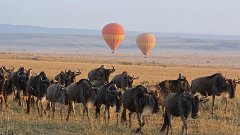 Serengeti-Balloon