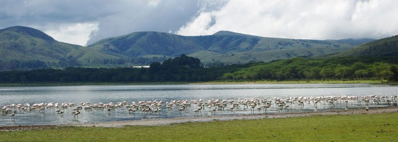 Lake-Naivasha-Boat-Ride