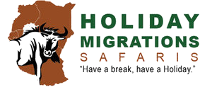Holiday Migrations Ltd
